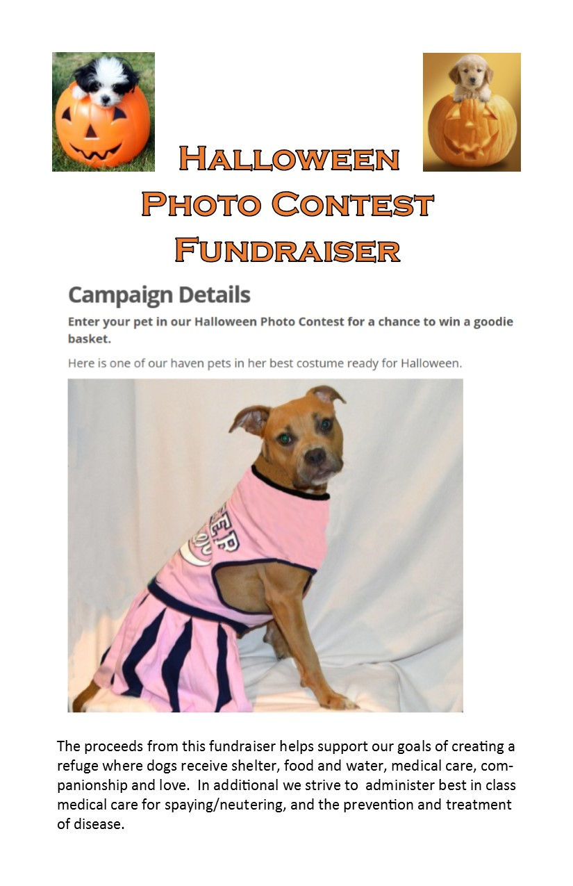 halloween contest flyer 2016 i heart dogs rescue and animal haven